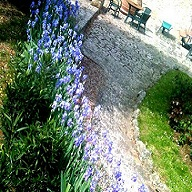 Accommodation in Tuscany :: Fattoria di Catignano